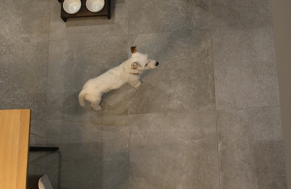 滑りにくく汚れに強いタイル床(床暖房あり)